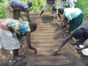 Men and women planting vegetable seeds in a nursery bed in Eastern Equatoria state, South Sudan. Credit: Charlton Doki/IPS