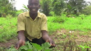 OFSP 20-year-old farmer Jaspher Okello with eggplant